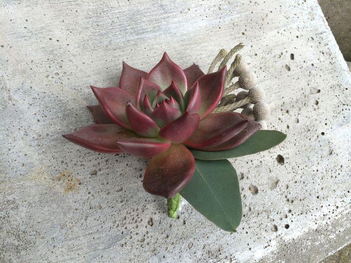 Tmx 1415827402454 Img1006 Dover, New Hampshire wedding florist