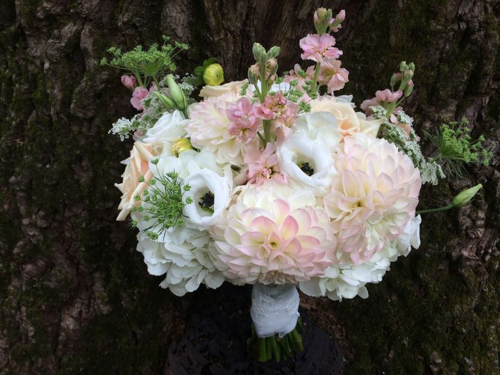 Tmx 1465250188272 Img1811 Dover, New Hampshire wedding florist