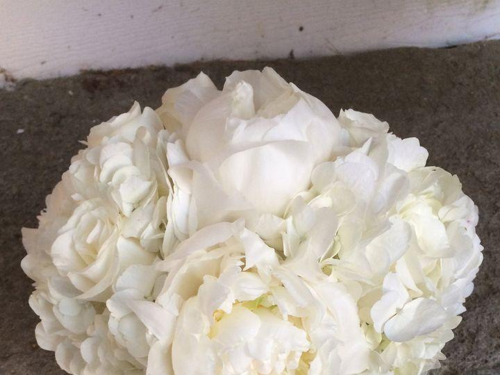 Tmx 1486074397209 Img2772 Dover, New Hampshire wedding florist