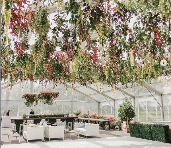 Hanging flora