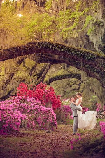 Magnolia plantation and gardens venue charleston sc weddingwire for Magnolia gardens charleston sc