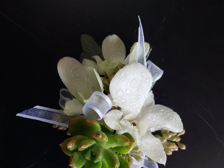 Tmx Orchid And Succulent Corsage 51 1981317 159750914180197 Spartanburg, SC wedding florist
