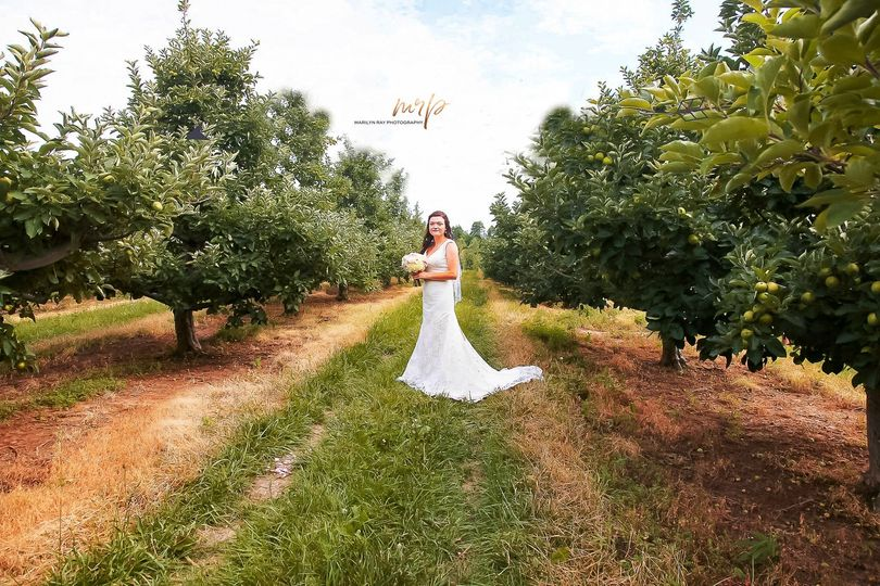 Outdoor apple farm wedding