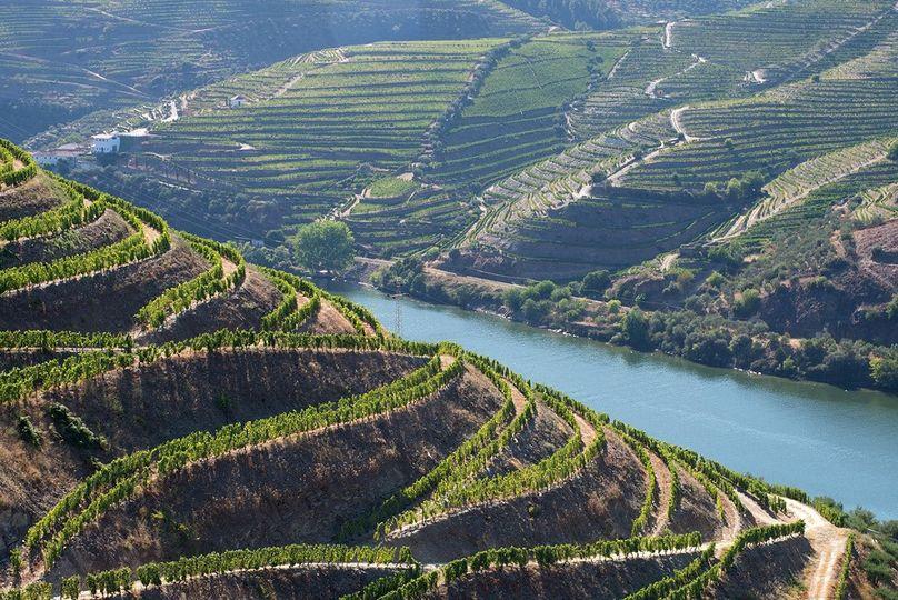 Protugal's Douro River