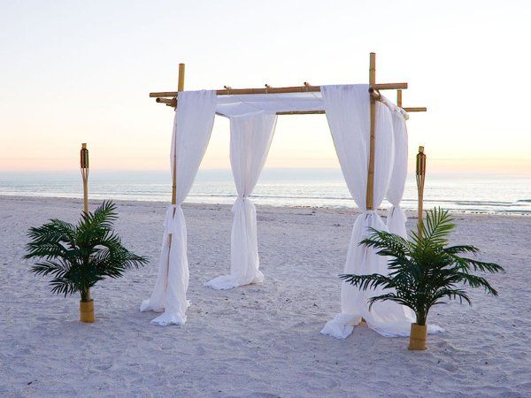 Bamboo Canopy Arch and special palm tree tikis.