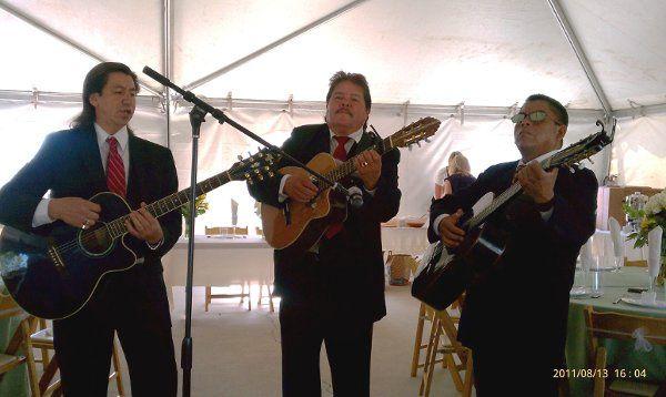 Mariachi Trio Estrellas De Oro