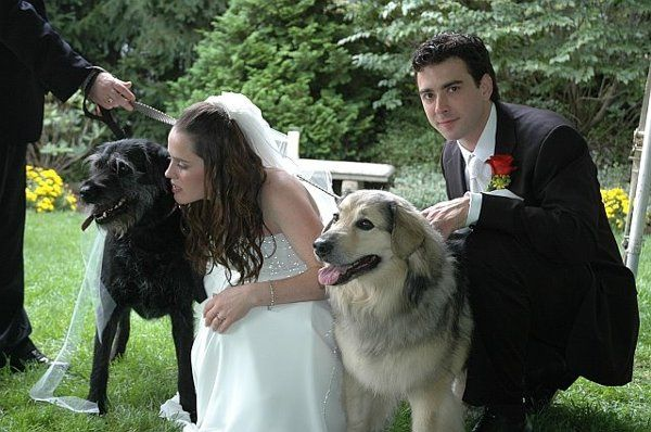 How wonderful to include the four legged fuzzies in the ceremony!