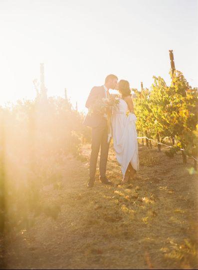 Vineyard with love