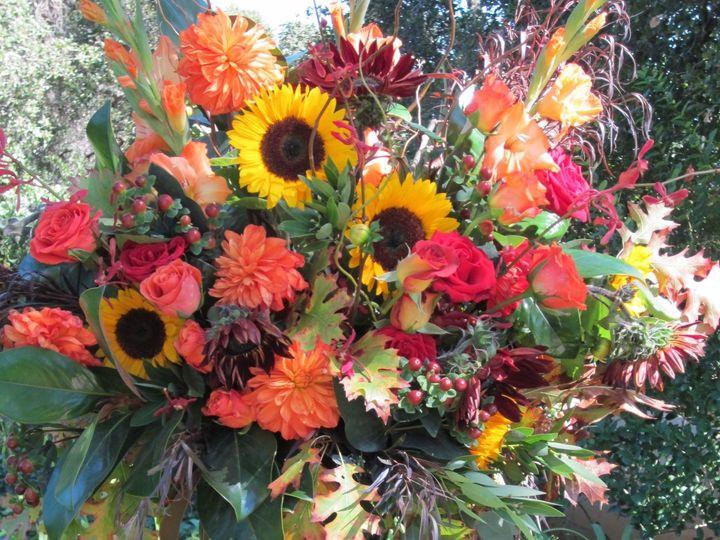 Tmx 1467134334050 Dillen92510stagsleap 021 Saint Helena wedding florist