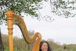 Harpist Janet King image