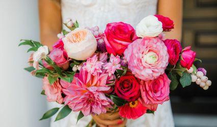 Jasmine Rose Events