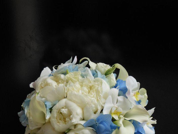 Tmx 1342543803423 DSCN0638 Teaneck, NJ wedding florist