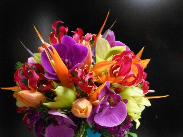 Tmx 1349216874486 Dscn0808 Teaneck, NJ wedding florist