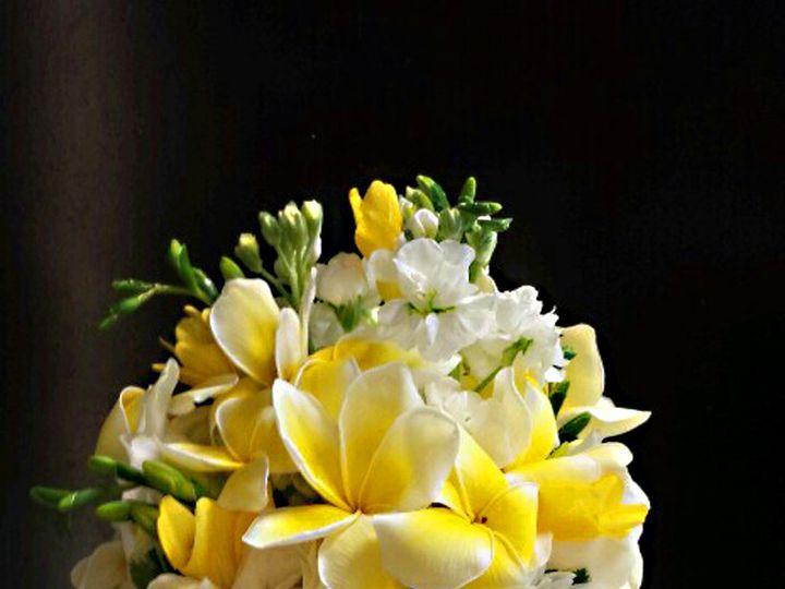 Tmx 1450305125356 Shalini Bb Teaneck, NJ wedding florist