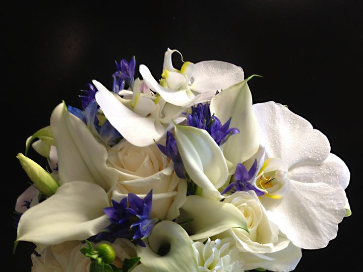 Tmx 1450305168532 White And Blue Bb Teaneck, NJ wedding florist