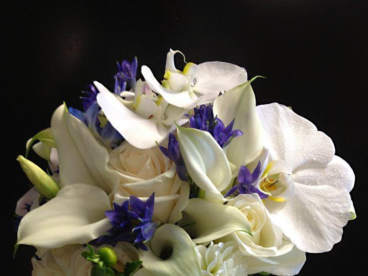 Tmx 1450305168532 White And Blue Bb Teaneck, NJ wedding florist