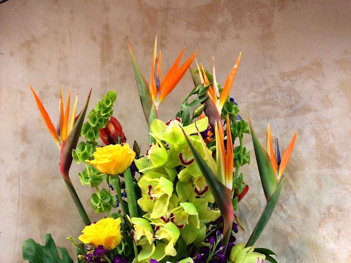 Tmx 1489000159061 Ak Birds Teaneck, NJ wedding florist