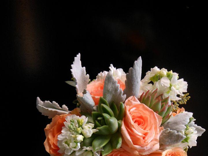 Tmx 1503523221106 Corals And Succulents Teaneck, NJ wedding florist