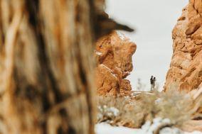 Wolf & Sparrow
