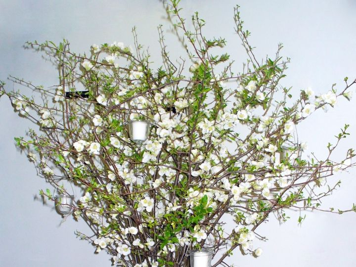 Tmx 1413931969669 1002 Englishtown wedding florist