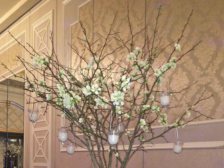 Tmx 1413932065355 1017 Englishtown wedding florist