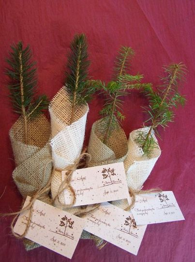 The ultimate green wedding favor! Give your friends and family an everlasting remembrance of your...