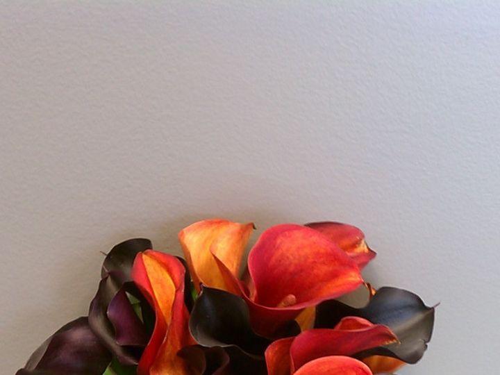 Tmx 1403273845325 Imag0815 Urbandale, Iowa wedding florist