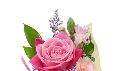 Fleur Story 1
