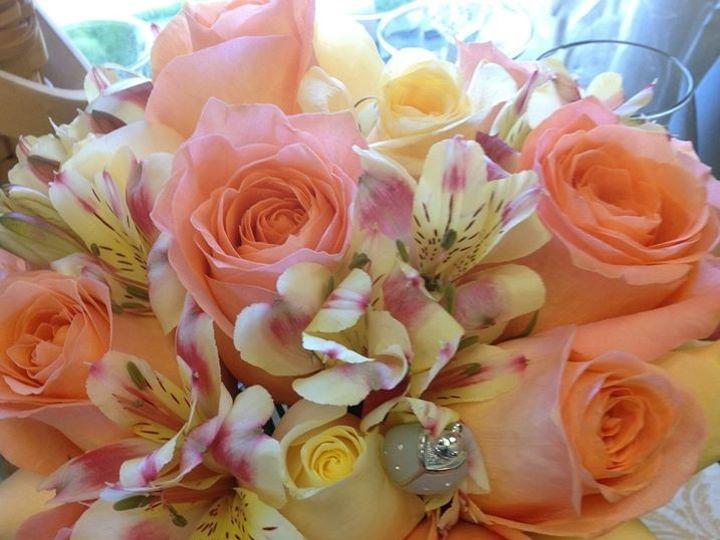 Tmx 1443127496005 Tarabouquet Mount Holly wedding florist