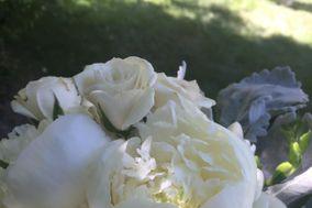 Sage Valley Floral