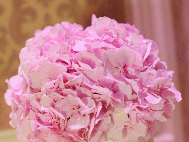 Tmx 1504286043520 Fbimg1504226128492 New Windsor, NY wedding florist