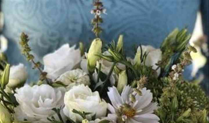 Kreeger Farms Flowers