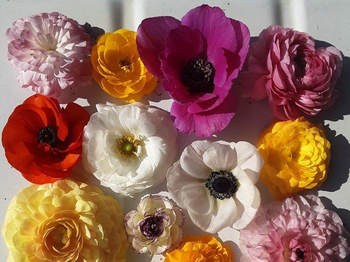Tmx 20190622 181709 51 1073717 1561927179 Fowlerville, MI wedding florist