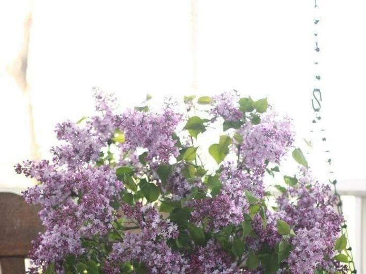 Tmx Fb Img 1561928090024 51 1073717 1561928263 Fowlerville, MI wedding florist