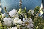Kreeger Farms Flowers image