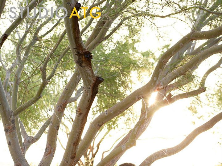 Tmx 1420499134796 Acfac62 Las Vegas wedding photography