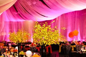 Amy Zaroff Events + Design