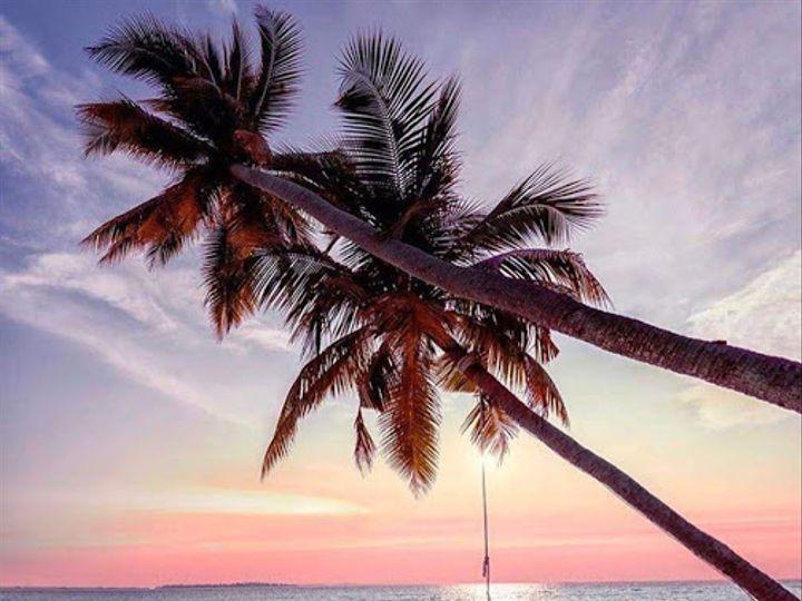 Tmx Img 5932 Sunset Palm Tree 51 1980917 159663296588001 West Bridgewater, MA wedding travel