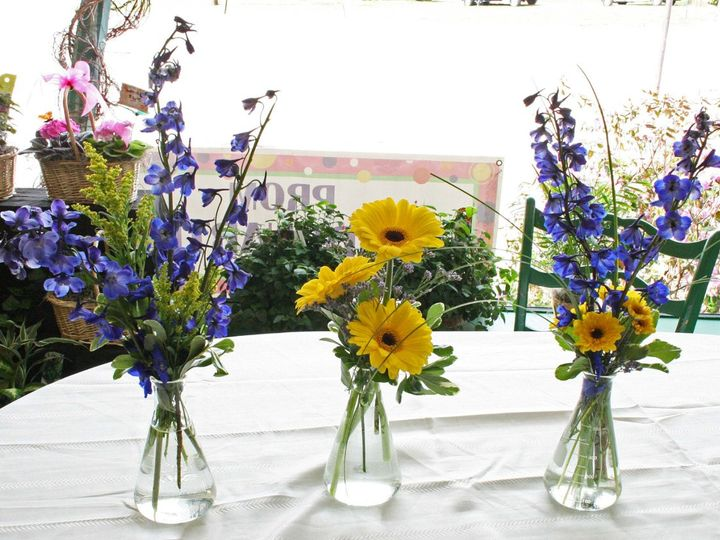Tmx 1343140534451 RachelAlfie3choicestogether Dover, NH wedding florist