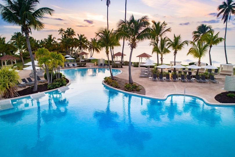 Palm trees and pool