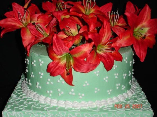 Tmx 1200929096019 GreenCornelliLaceandSwissDotsCloseUp Harrisonville wedding cake