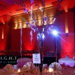 Event and Lighting Decor to match your ballroom