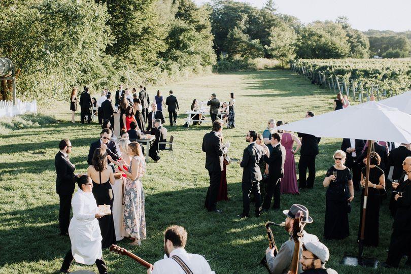 Vineyard wedding outdoors