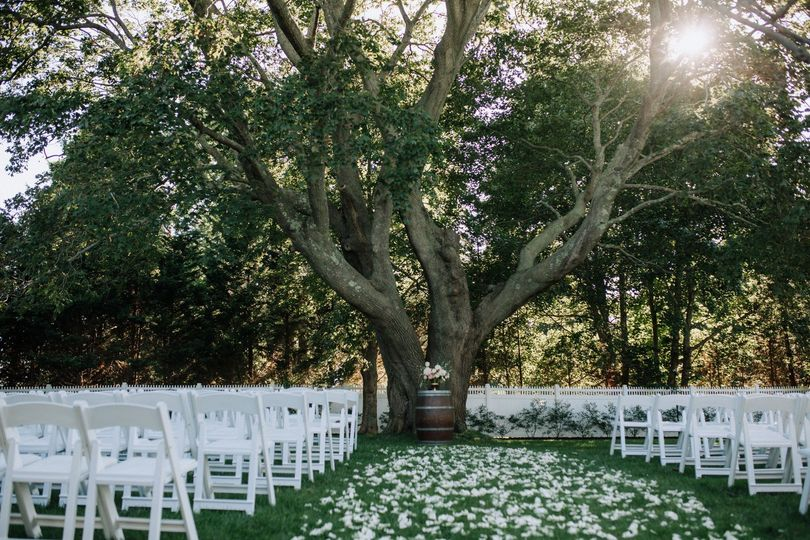 Ceremony set up by large tree