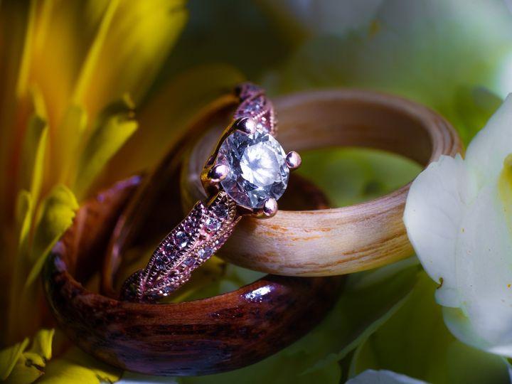 Tmx Untitled 415 51 951127 158171135554348 Virginia Beach, VA wedding photography