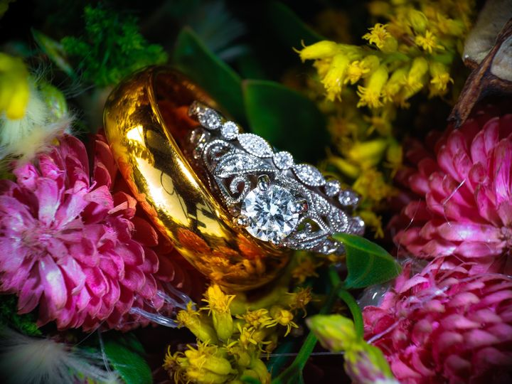 Tmx Untitled 473 51 951127 158171137371422 Virginia Beach, VA wedding photography