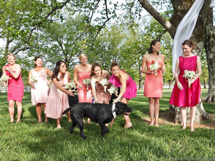 Tmx 1389576809160 Coyeswensondonmearsphotography19024coyeswenson Charlottesville, VA wedding rental