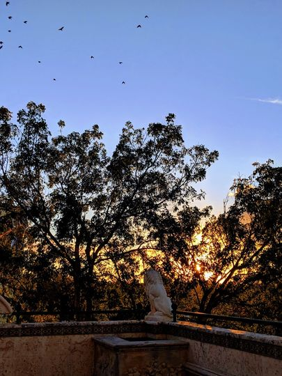 Sunsets at Terraza De Leon