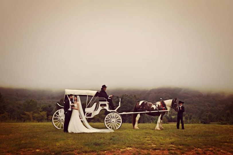 horse carriage and bride groom 51 1535227 1566951591