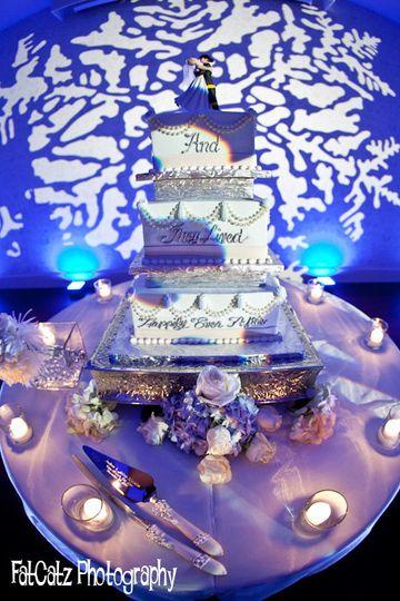 vividlite cake lighting